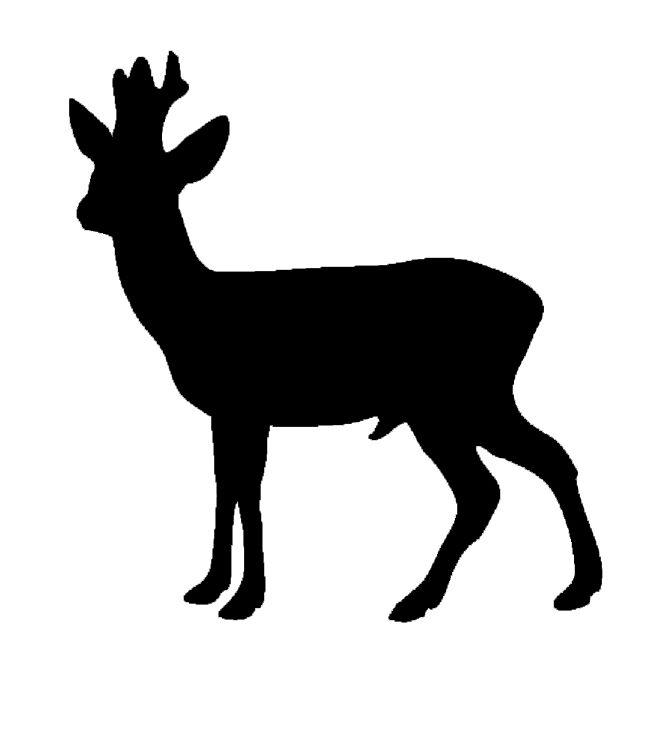 Design Sticker - Råbuk